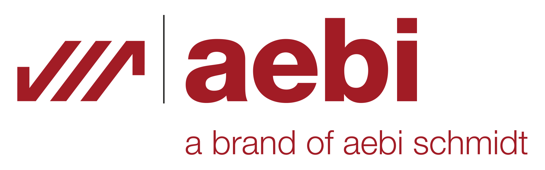 logo AEBI SCHMIDT GROUP